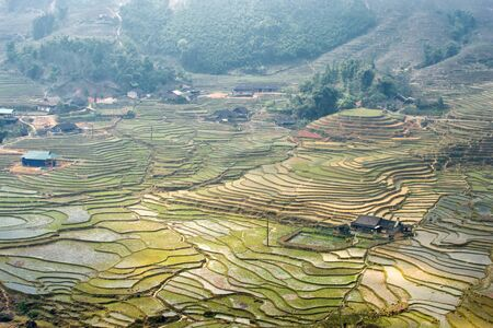 cultural diversity: Rice terraces on a foggy day outside Sapa in the Lao Cai province of Vietnam. Sapa is famous for its rugged scenery and its cultural diversity. Stock Photo