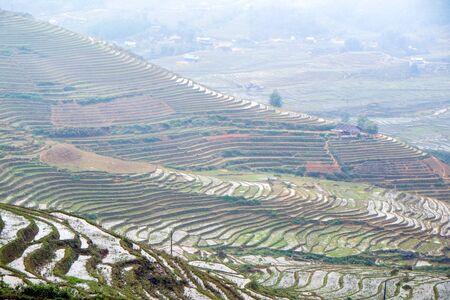 diversidad cultural: Las terrazas de arroz en un d�a lluvioso y con niebla fuera de Sapa en la provincia de Lao Cai de Vietnam. Sapa es famoso por su paisaje accidentado y su rica diversidad cultural.