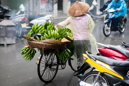 guilds: Hanoi, Vietnam - February 11, 2015:  Vietnamese woman selling bananas from a bicycle in the old quarter of Hanoi. The 36 old streets and guilds of the old quarter are a major tourist attraction.
