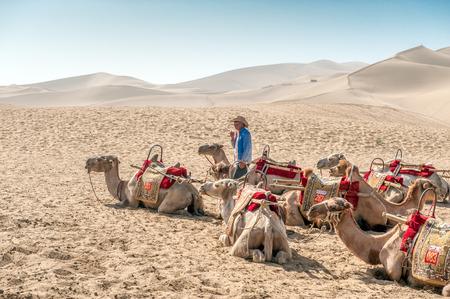 Dunghuan, China 29 juni 2012: Kamelen die op de beroemde zingende zandduinen van de Gobi-woestijn in Dunhuang. De zandduinen in Dunhuang op de Zijderoute zijn een belangrijke toeristische attractie.