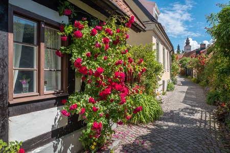 Medieval alley in the historic Hanse town Visby on Swedish Baltic sea island Gotland.