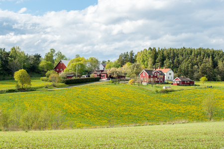 Lente op het platteland van Smà ¥ land, Zweden Stockfoto
