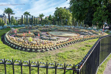 Norrkoping, Sweden - June 26, 2018: The famous cactus group at Carl Johans park in Norrkoping. The group is an annual tradition since 1926 and consists of 25 thousand plants which celebrate a local ju