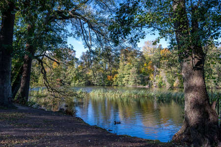 A sunny autumn day in city park Abackarna along Motala river in Norrkoping, Sweden 版權商用圖片