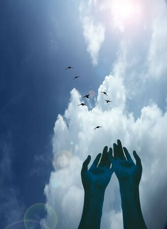 release: Hands gesture toward a flock of birds in flight Stock Photo