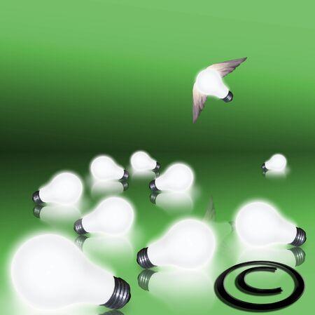 Een enkele lamp neemt vlucht over een gebied van bloembollen en een copyright-symbool