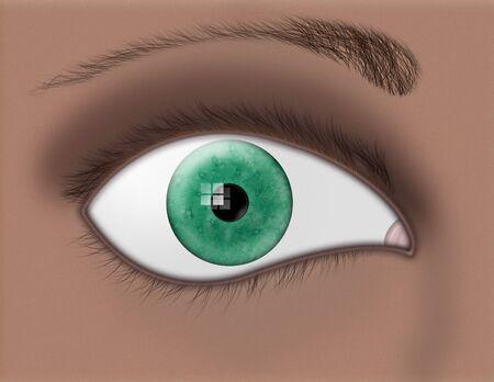 Coseup of a green iris and eye