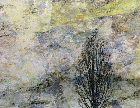 Tree Composition