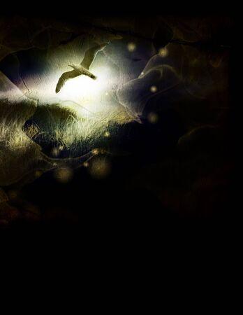 Grunge Bird Composition Stock Photo - 2068077