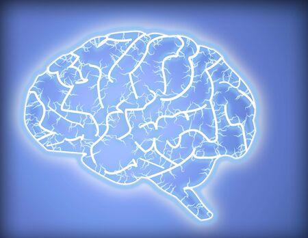 Brain Фото со стока
