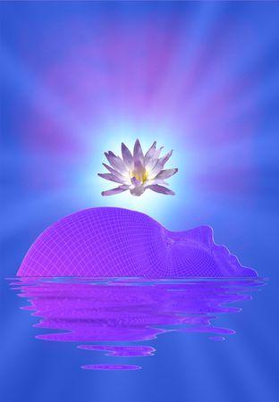 paz interior: Meditaci�n cara y Lotus  Foto de archivo