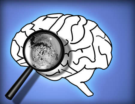 personality: Brain Fingerprint - Identity - Personality - Analysis Stock Photo