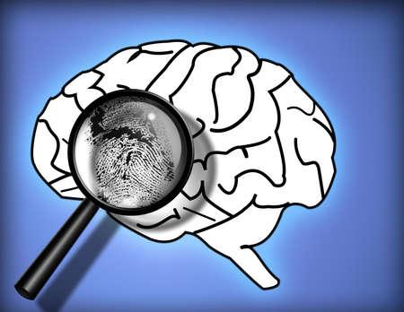 fissures: Brain Fingerprint - Identity - Personality - Analysis Stock Photo