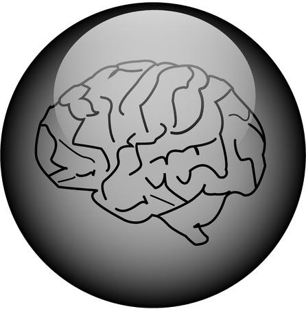 Glass Brain Button Vector