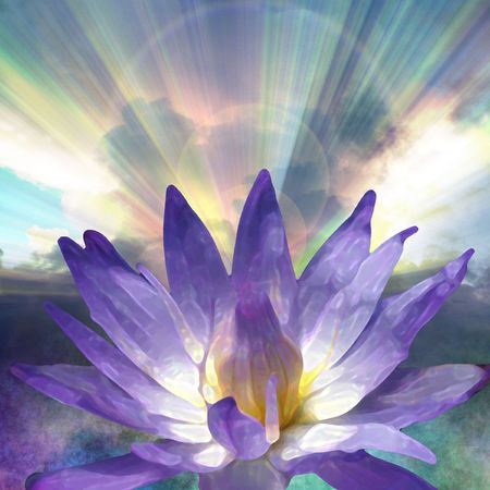 beam of light: Lotus and Light