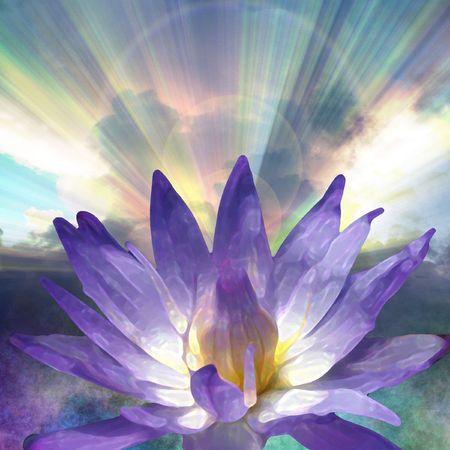 Lotus et Lumière  Banque d'images