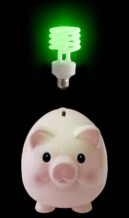 Pig with green idea photo