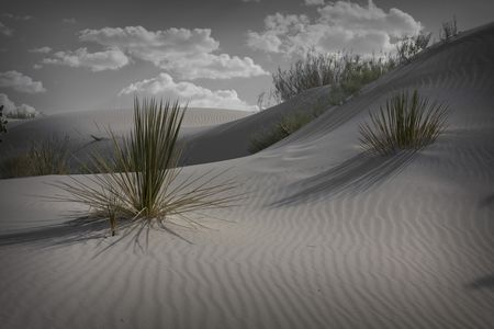 White Sands New Mexico Stock Photo - 4590222