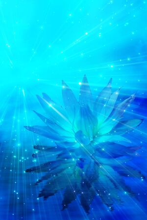 Meditation Flower Abstract           Stock Photo - 5090575