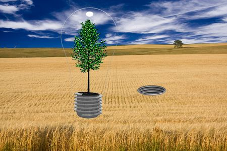 Tree Bulb and Socket in field Stock Photo - 5319306