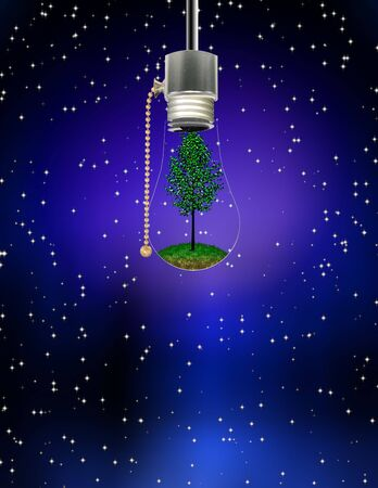 Tree in Hanging Bulb Stock Photo - 5548354