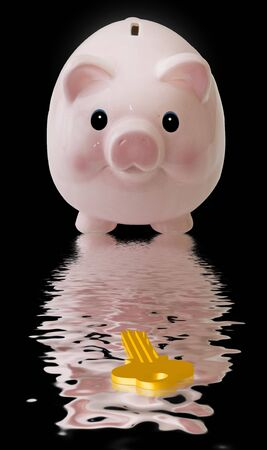 Pink Pig with Key Stock Photo