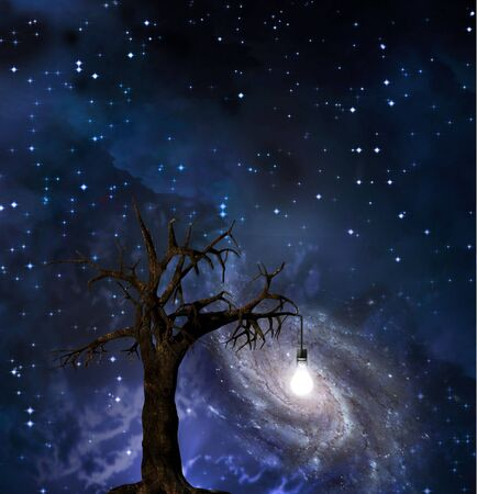 Tree with hanging light bulb and galaxy in starscape Stock Photo - 6432569