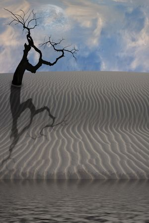 Water in desert with single tree Stock Photo - 6851057