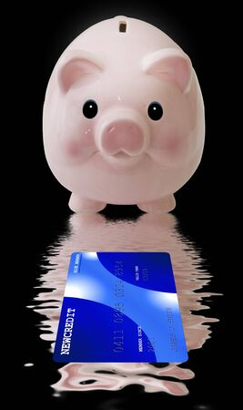retire: Piggy Bank with Credit Card