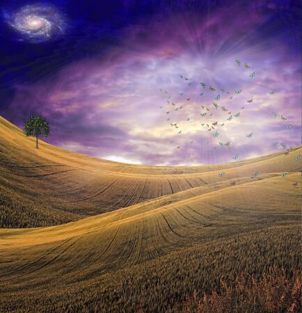 Serene landscape with dramatic sky Stock Photo - 6869756