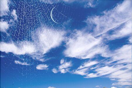 Web and moon photo