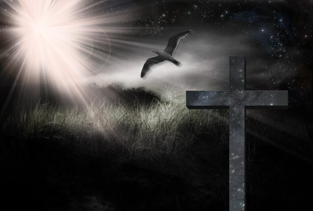 Cross and Bird in Landscape Stock Photo - 7057477