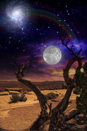 Woestijn tree en horizon met de regenboog met opzettelijk overdreven kleuren  Stockfoto