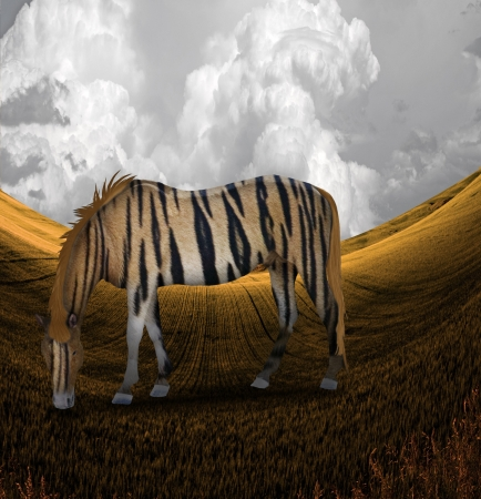Tiger Striped Horse in Landscape photo