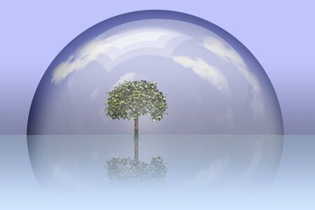 glass sphere: Tree preserved under glass dome
