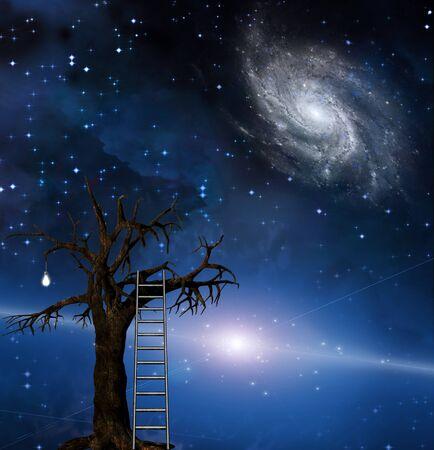 concept magical universe: Escalera se inclina sobre el �rbol de la sabidur�a  Foto de archivo