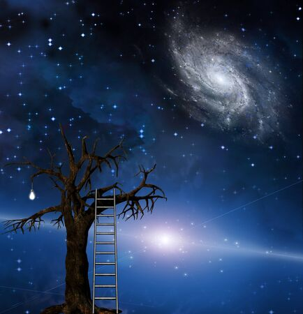 t bulb: Ladder leans on tree of wisdom Stock Photo