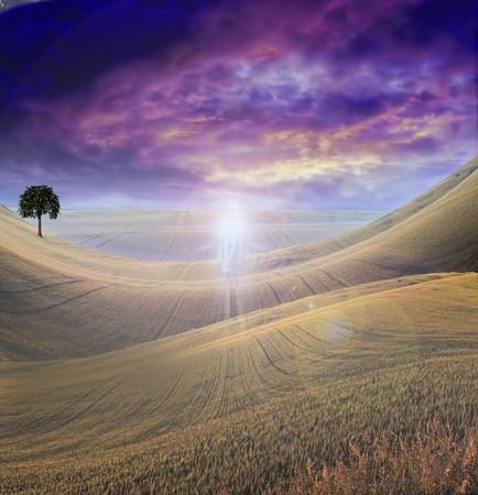 Figuur van licht wordt weer gegeven in Sky over beautiful land s cape