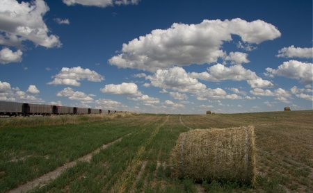 Train and field with hay Stock Photo - 8540549