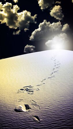 Footprints in desert White Sands New Mexico USA Stock Photo - 8698840