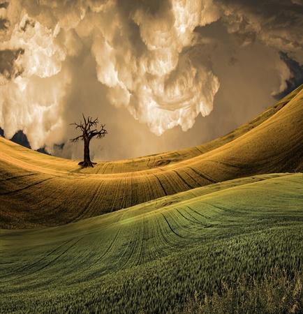 Serene landschap met dramatische hemel