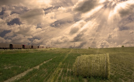 Train and field with hay Stock Photo - 9109267