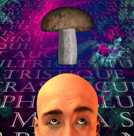 Mushroom and man Stock fotó