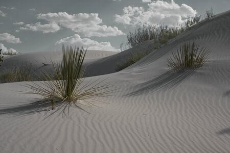 White Sands New Mexico USA photo