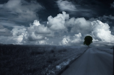 landscape: landscape