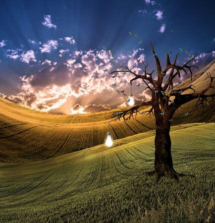 Landscape with bulb fruit tree photo
