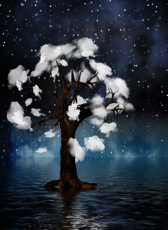 spiritual growth: Tree surrounded by clouds