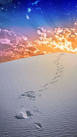 Footprints in deesert sands photo