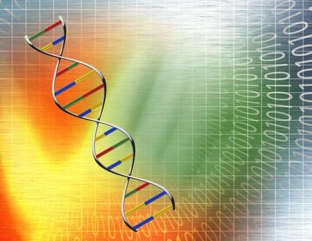 DNA のデータ