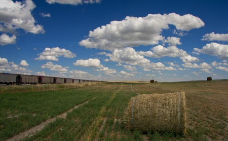 Train and field with hay Stock Photo - 10279281